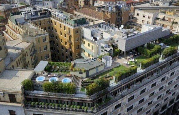 Oasi di verde nelle città: una risorsa preziosa per la qualità dell'aria e per ridurre il caldo estivo killer