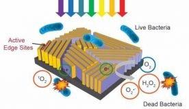 """Tecnologie green: un """"francobollo"""" hi-tech per la purificazione dell'acqua"""