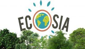 Ecosia: il primo motore di ricerca ecologico che pianta alberi