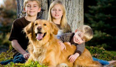 Quali sono i migliori cani per tenere in casa quando ci sono bambini piccoli?